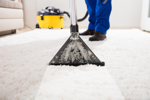 Water Removal Service for Carpet