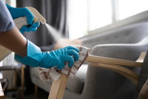 Which Area Of Your Home Has The Most Germs?