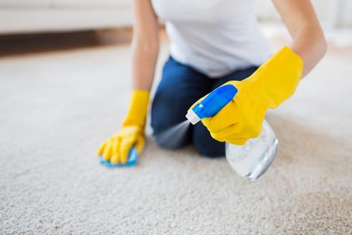 How To Keep Carpet Germ & Bacteria Free?