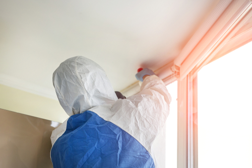 How To Find A Professional Disinfection Service For My Home?